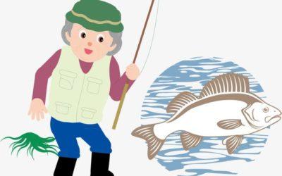 Pêche à nouveau autorisée à partir du 4 mai