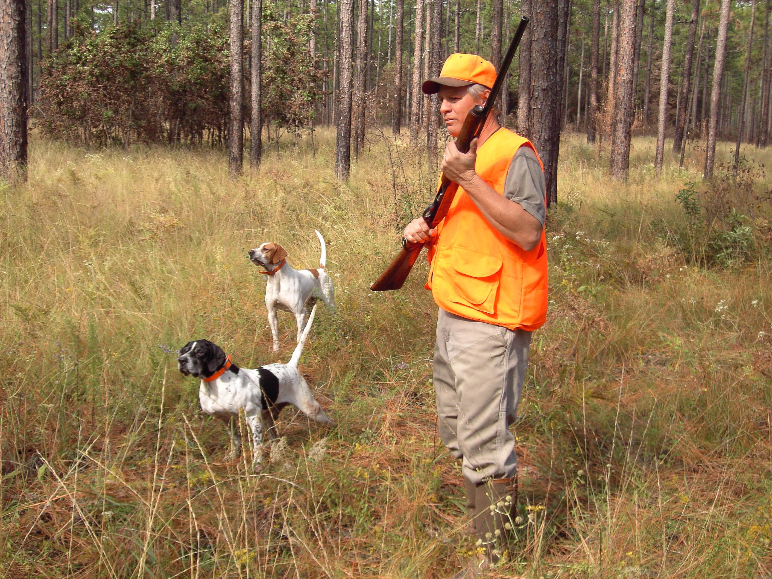 Battues de chasse