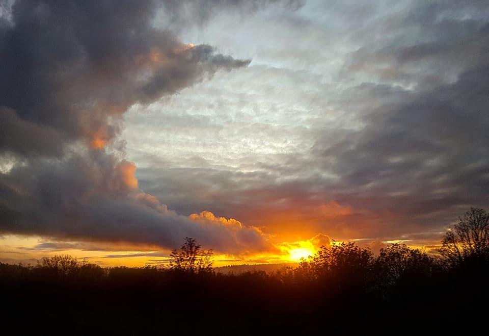 Amande - coucher de soleil