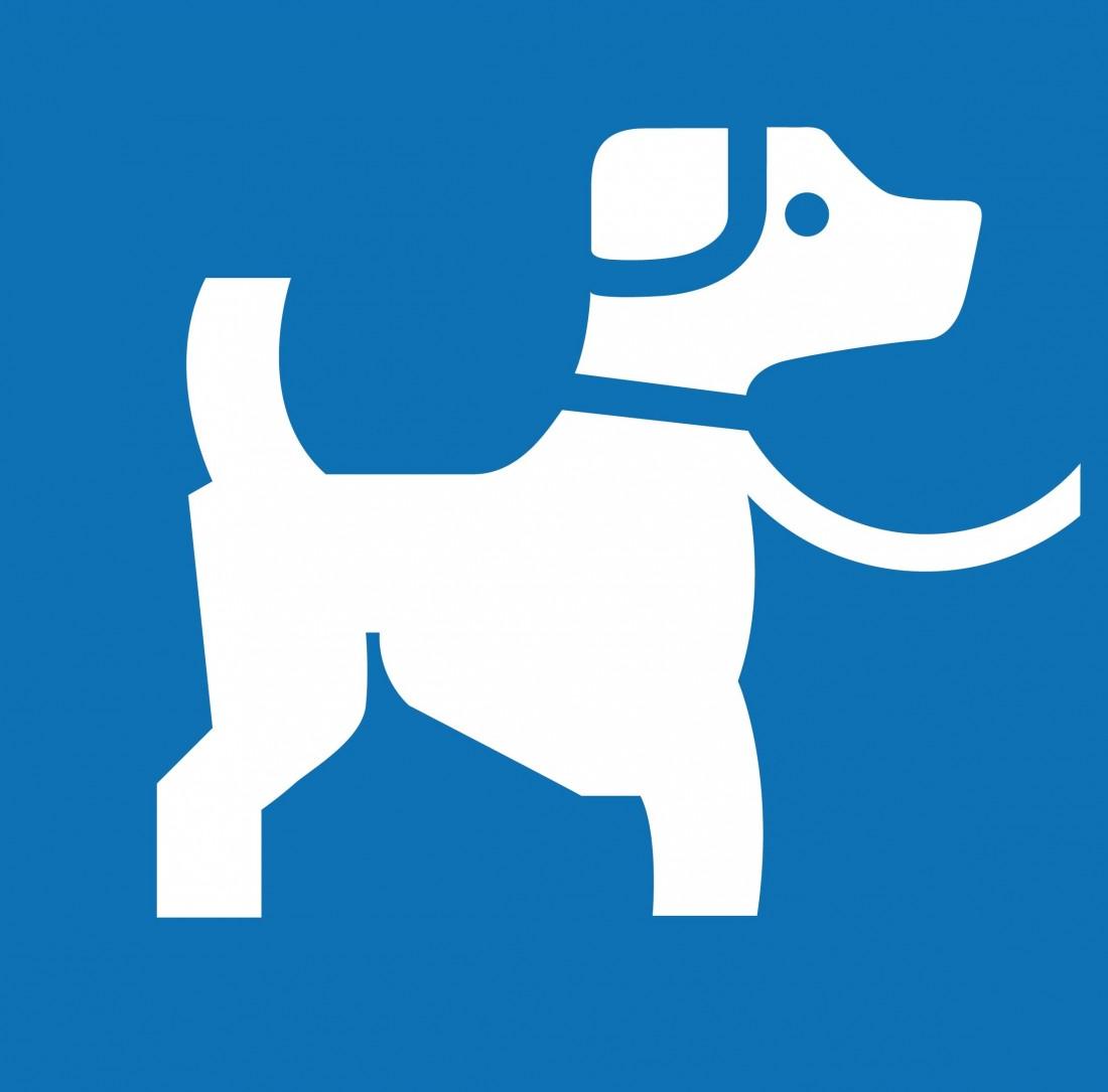 picto chien